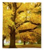 An Autumn Walk - 2 Fleece Blanket