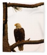 An Eagle Day Dreaming Fleece Blanket