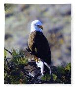 An Eagle In The Sun Fleece Blanket