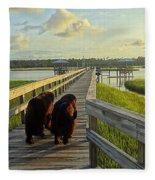 An Evening Stroll Fleece Blanket