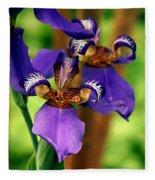 An Eyeful Iris Fleece Blanket