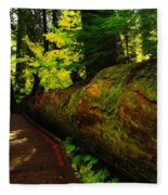 An Old Fallen Tree Fleece Blanket