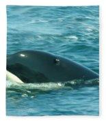 An Orca Surfaces  Fleece Blanket