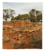 Anasazi Ruins Southern Utah Fleece Blanket