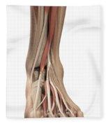 Anatomy Of The Foot Fleece Blanket