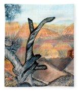 Anceint Canyon Watcher Fleece Blanket