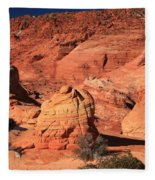 Ancient Sand Dunes Fleece Blanket