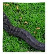 Anerythristic Red Belly Snake Fleece Blanket