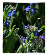 Angel Island Bee Fleece Blanket