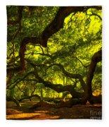 Angel Oak Limbs Crop 40 Fleece Blanket