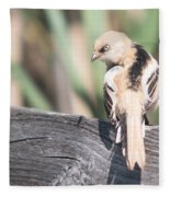 Angry Bird Bearded Reedling Juvenile Fleece Blanket