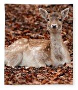 Animal Fleece Blanket