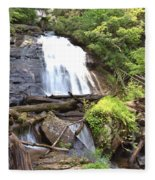 Anna Ruby Falls - Georgia - 4 Fleece Blanket