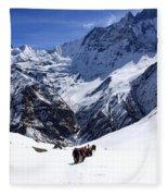 Annapurna Sanctuary Trail Fleece Blanket