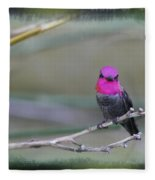 Anna's Hummingbird - Male Fleece Blanket