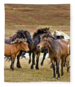 Annual Horse Round Up-laufskalarett Fleece Blanket