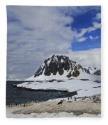 Antarctic Wilderness... Fleece Blanket