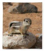 Antelope Ground Squirrel Fleece Blanket