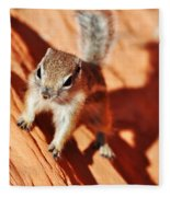 Antelope Ground Squirrel Fleece Blanket