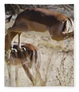 Antelope Leap  Fleece Blanket