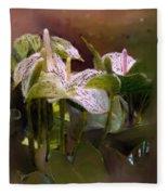 Anthutium Fleece Blanket