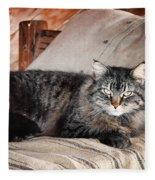 Antiquity Kitty Fleece Blanket
