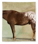 Appaloosa Fleece Blanket