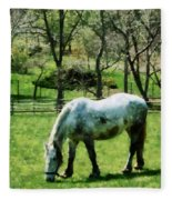 Appaloosa In Pasture Fleece Blanket
