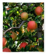 Apple Harvest - Digital Painting Fleece Blanket
