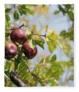 Apple Pickin' Time Fleece Blanket