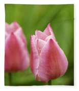 Apple Pink Tulips Fleece Blanket