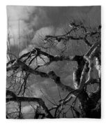 Apple Tree Bw Fleece Blanket