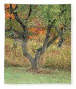 Apple Tree In Autumn Fleece Blanket