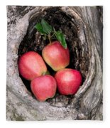 Apples In Tree Fleece Blanket