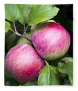 2 Apples On Tree Fleece Blanket