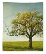 Appletree Fleece Blanket
