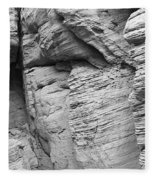 Approach To Tent Rocks Fleece Blanket