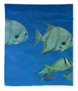 Aquatic Blues Fleece Blanket