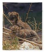 Arabian Leopard Panthera Pardus Cubs Fleece Blanket
