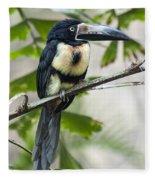 Aracari Fleece Blanket