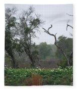 Aransas Nwr Landscape Fleece Blanket