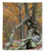 Arboreal Architecture Fleece Blanket
