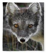 Arctic Fox In Summer Coat Fleece Blanket