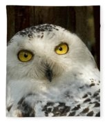 Arctic Visitor Fleece Blanket
