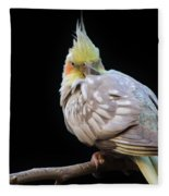 Are You Looking At Me Fleece Blanket