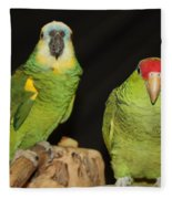 Are You Looking At Us Fleece Blanket