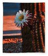 Argentine Cactus Fleece Blanket