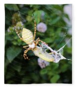 Argiope Spider Top Side Horizontal Fleece Blanket