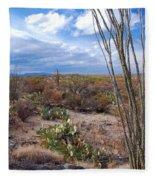 Arizona Afternoon Fleece Blanket