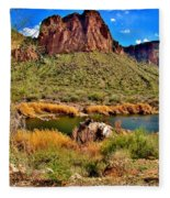 Arizona At Its' Best Fleece Blanket